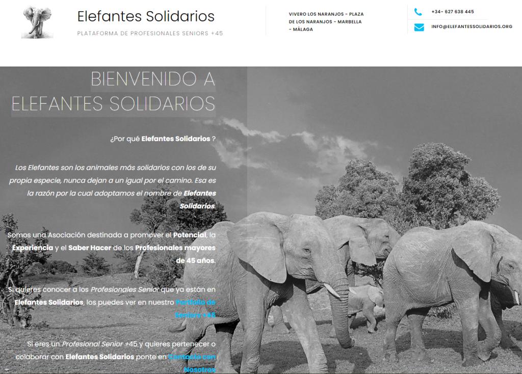 Elefantes Solidarios